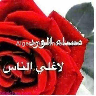 Annonces Recherche mariages - Mariage ouedknisse algerie